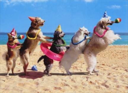 cd10378-dog-conga-line-birthday-card
